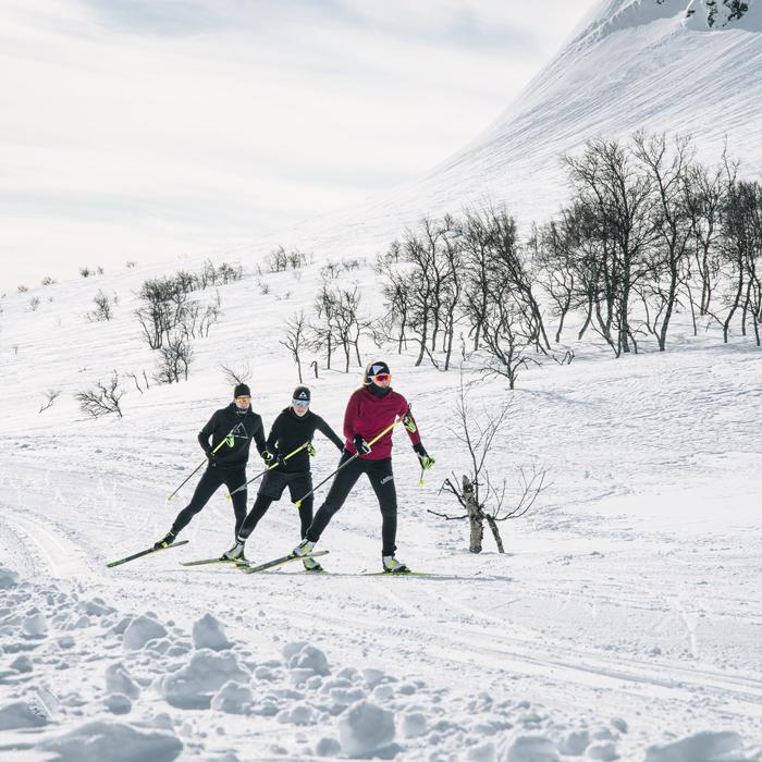 skiletics_chaussures-ski-de-fond-skating